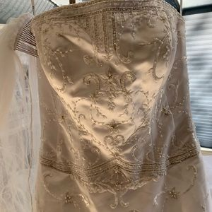 Detailed Wedding Dress & Veil